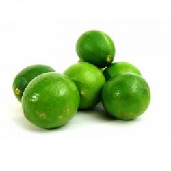 Limon comun