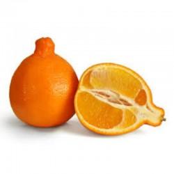 Naranja ombligona
