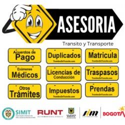 Asesoria en Transito y Transporte