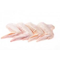 alitas de pollo blanco